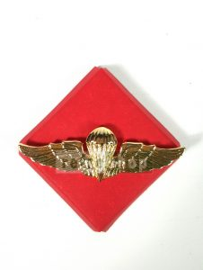 Brevet Wing Para TNI BWPRT01 Kokoh Awet Kuat Elegan Mewah Berkualitas
